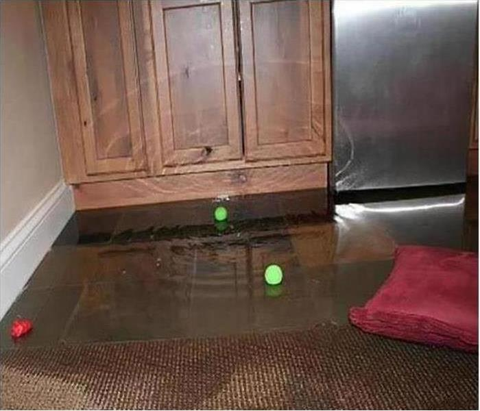Kitchen with water damage