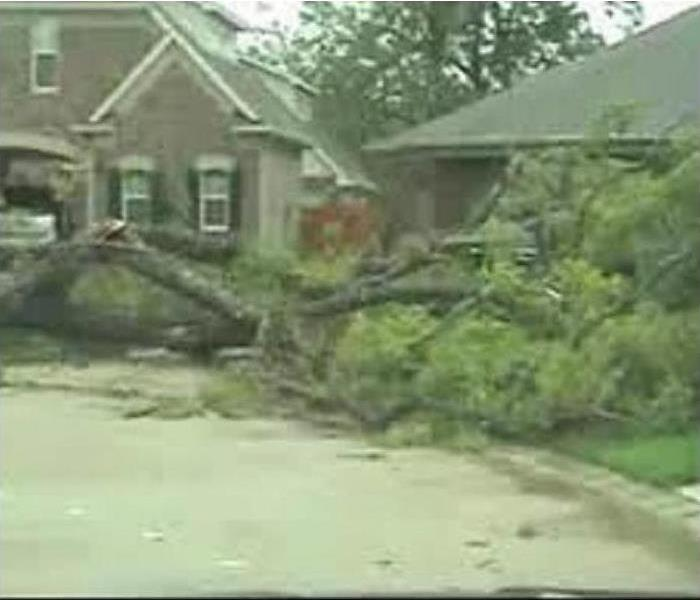 Picture of tree that has fallen onto the roof of a local home