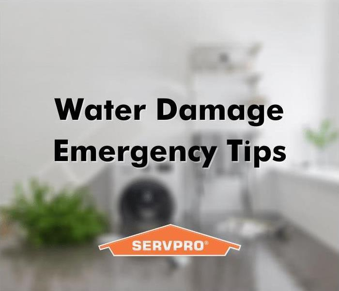 Water damage emergency tips for Orlando residents